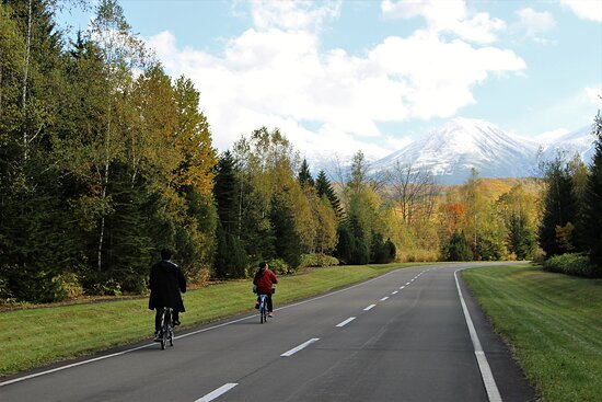 Guided Cycling Tour Biei