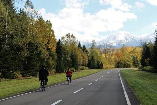 Biei-cho, اليابان: 秋の紅葉サイクリングツアー