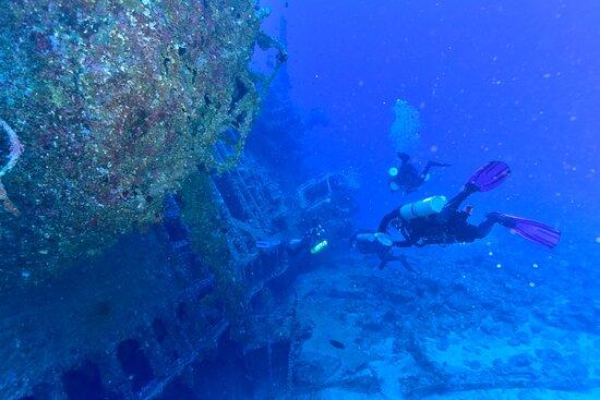 Take Dive