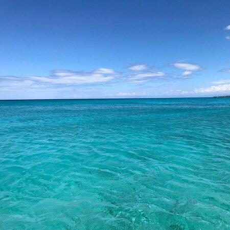 Pedernales Province, Dominican Republic: Dominican Republic 2019 Amazing trip 🐬🐳🐋🐟🎣