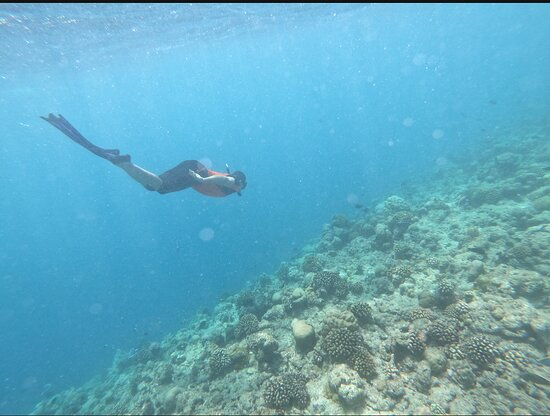Veligandu Island Resort & Spa Fotografie
