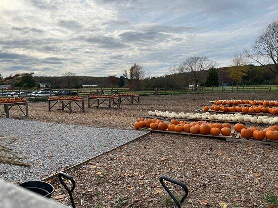 Deep River Farms