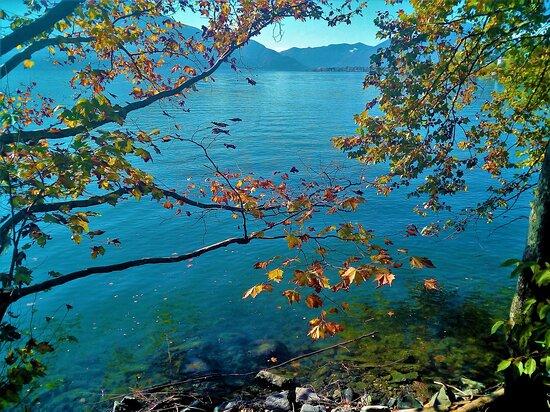 Passeggiata sul lago Maggiore.  Minusio -Locarno. 24 Ottobre 2020. Foto fatte con il telefonino.