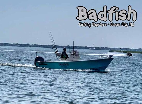 Somers Point, NJ: Badfish Charters is  23foot cape classic designed for fishing both ocean front and the shallow flats of our region.   One of very few boats in the area that can float in 10 inches and still fish 10 plus miles out