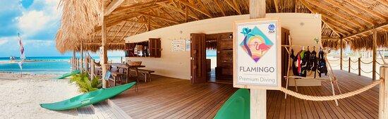 Flamingo Premium Diving Bonaire