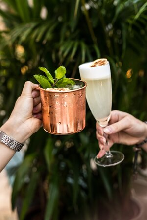 Moscow mule   Pisco sour
