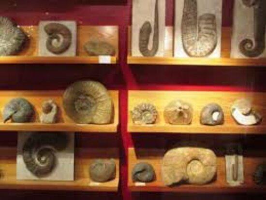 Musée Marthe Et Louis Maurel