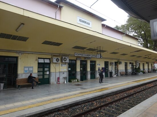 Lianokladi Train Station