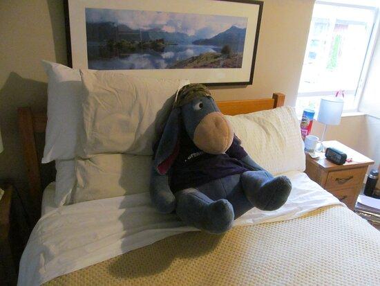 Birnam, UK: Eeyore found it VERY relaxing