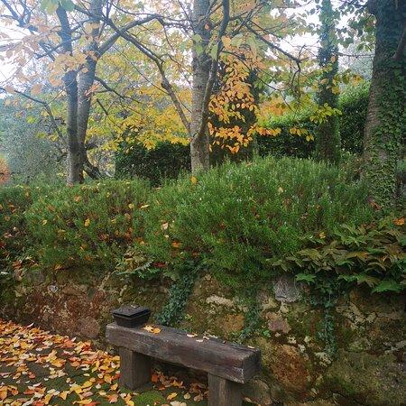 Petroio, Ý: L'autunno a Casina Valloreci....cosi romantico!!! ❤