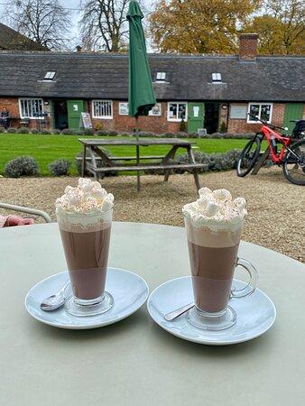 Sudbury, UK: Hazelnut Hot Chocolate with whipped cream and marshmallows