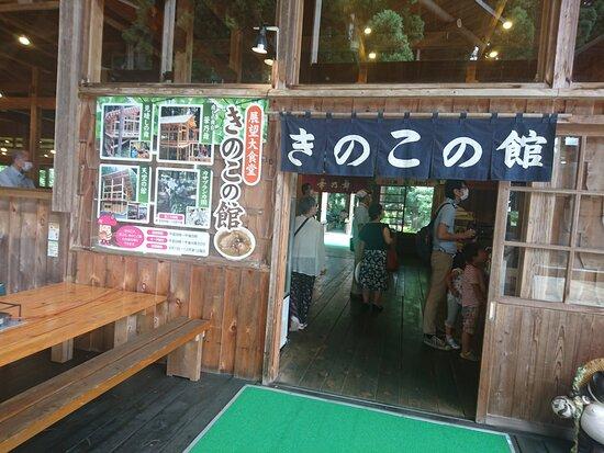 三川観光 きのこ園