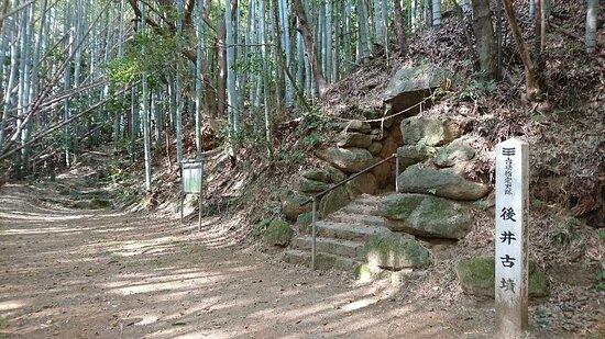 Goi Olden Tomb