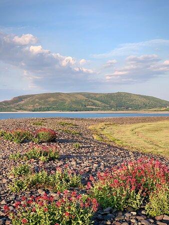 Porlock Weir, UK: Springtime on The Weir