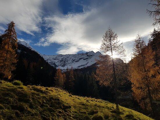 Val Cercen,  laterale della val di Rabbi. Nel cuore del Parco Nazionale dello Stelvio.  Autunno ed inverno si mescolano in tutto il loro splendore 😊  Trentino Alto Adige