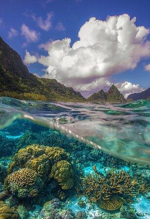 Samoa Amerykańskie: Samoa Americana 11