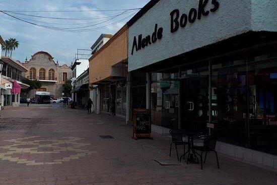 Allende Books & Tours
