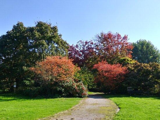 Orto Botanico Universitario Città Studi