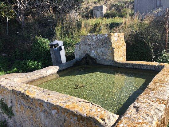 La Fonte Di Fontanarossa