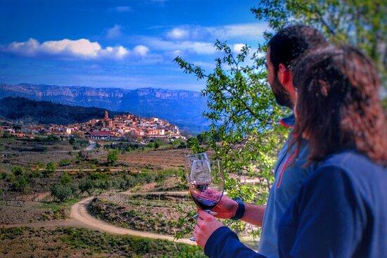 Private Wine and Oil Tour in the Priorat Wine Region