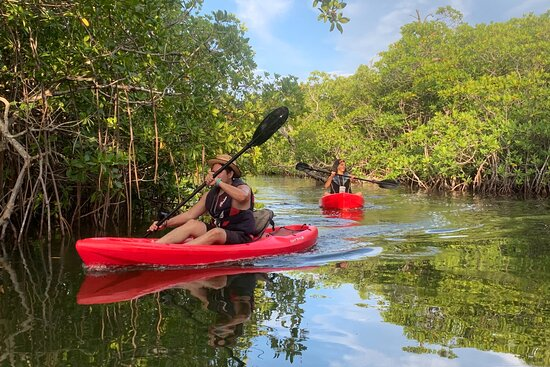 Kayak Experience Cancun