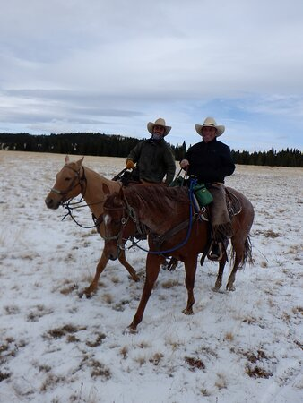 Shell, WY: driving cattle in the snow