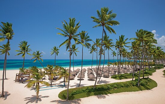 Pictures of Dreams Royal Beach Punta Cana - Dominican Republic Photos - Tripadvisor