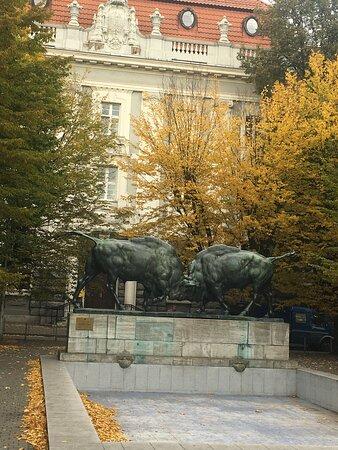 Скульптурная композиция из двух больших фигур зубров работы немецкого скульптора Августа Гауля, установленная в 1912 году в Кёнигсберге.
