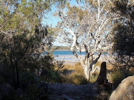 Yalgorup National Park, أستراليا: Walk