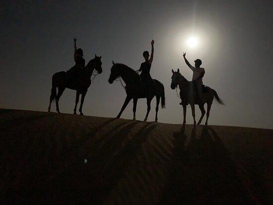 Happy Dunes Stables