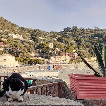 Bonassola, Liguria ❤