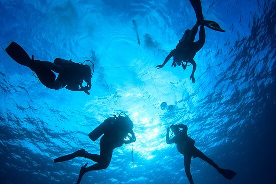 The Fives Dive Center