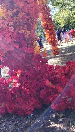 Floral Park Photo