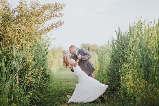 West Terre Haute, IN: Weddings @ the winery