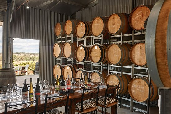 Heathcote, Úc: Our Cellar Door Barrel Room and outdoor ornamental Wine Garden to sit, enjoy our wine tastings and watch the world go by