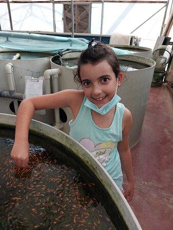 ביקור בחנות דגי נוי ענקית😍
