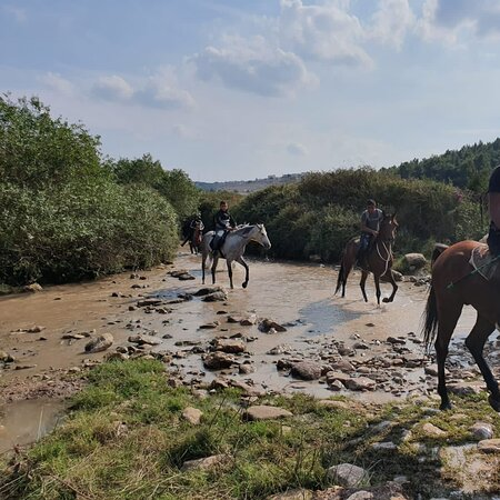 Zippori, Israele: נחל ציפורי אחרי הגשם ..ומסביב.north 🇮🇱