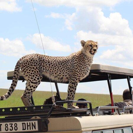 Muafrika Adventures