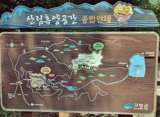 Misungsan Recreational Forest