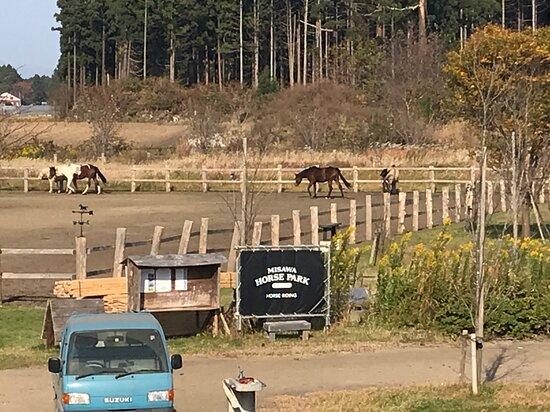 Misawa Horse Park