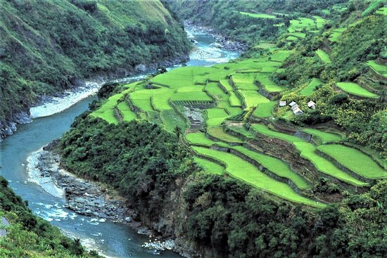 """الفلبين: Il fiume Chico nella Sierra Madre - Isola di Luzon - Filippine. A destra risaie con le capanne più lontane dal """"centro"""" di Bugnay.  Diapositiva digitalizzata.  Cliccare sulla foto per vederla come scattata."""