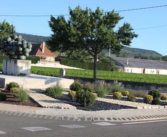 Grappe De Raisin De Puligny-montrachet