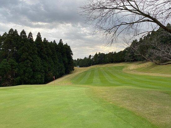 Anegasaki Country Club