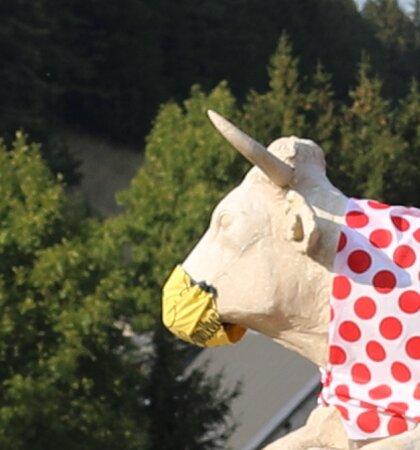 Les statues de la « vache villarde » et sa vachette .