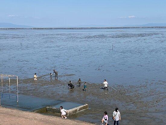 Michi No Eki Kashima Tidal Flat Experience