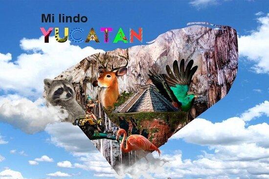 Mi Lindo Yucatan atv´s