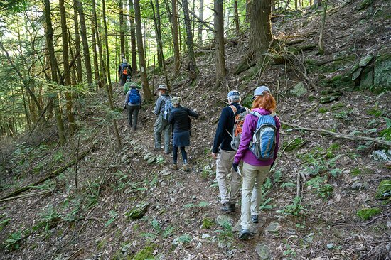Bird watchers hike at Howe Hill, one trail system in the Slate Valley Trails network.