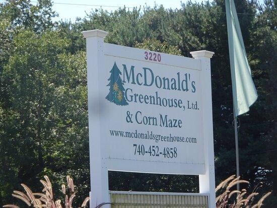 Mcdonald's Greenhouse, Zanesville, Ohio
