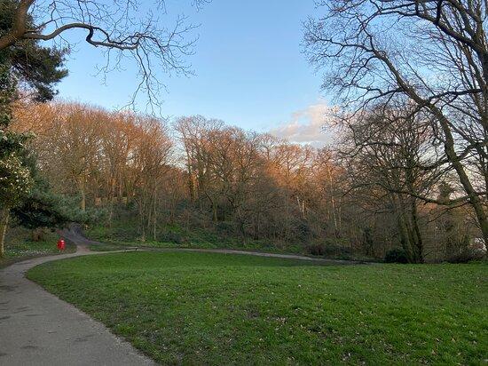 Martens Grove Park
