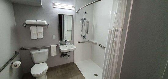 Brewton, AL : Mobility Accessible Bathroom